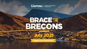 Brace the Brecons
